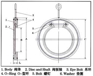 H74薄型對夾旋啟止回閥結構示意圖