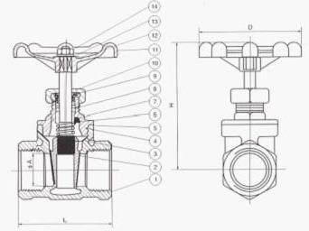 Z11不锈钢内螺纹闸阀结构图
