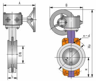 D371蜗轮对夹式软密封蝶阀结构图